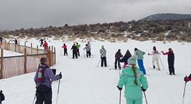 Outdoor Recreation - People Skiing