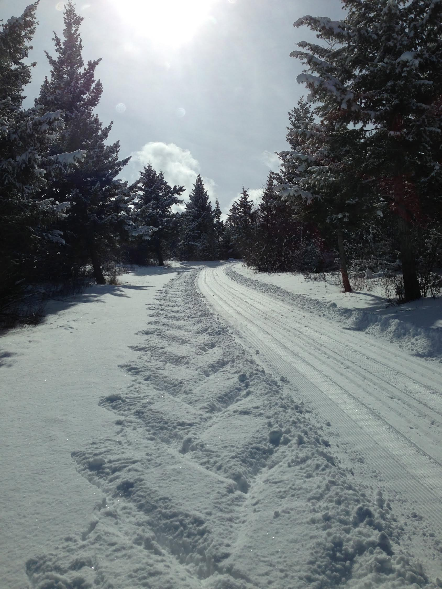 Groomed Trail