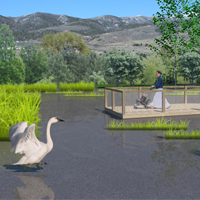 ZooWetlandConstruction