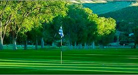Golf Course Green and Fairway