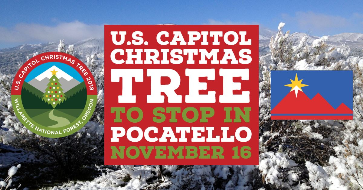 OtherCapitolChristmasTree