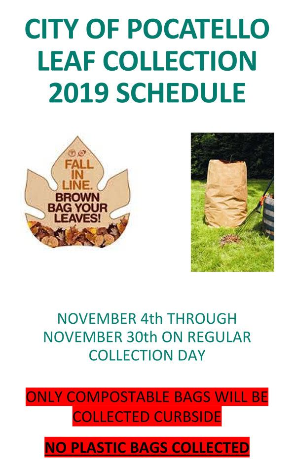 2019 Leaf Collection Poster