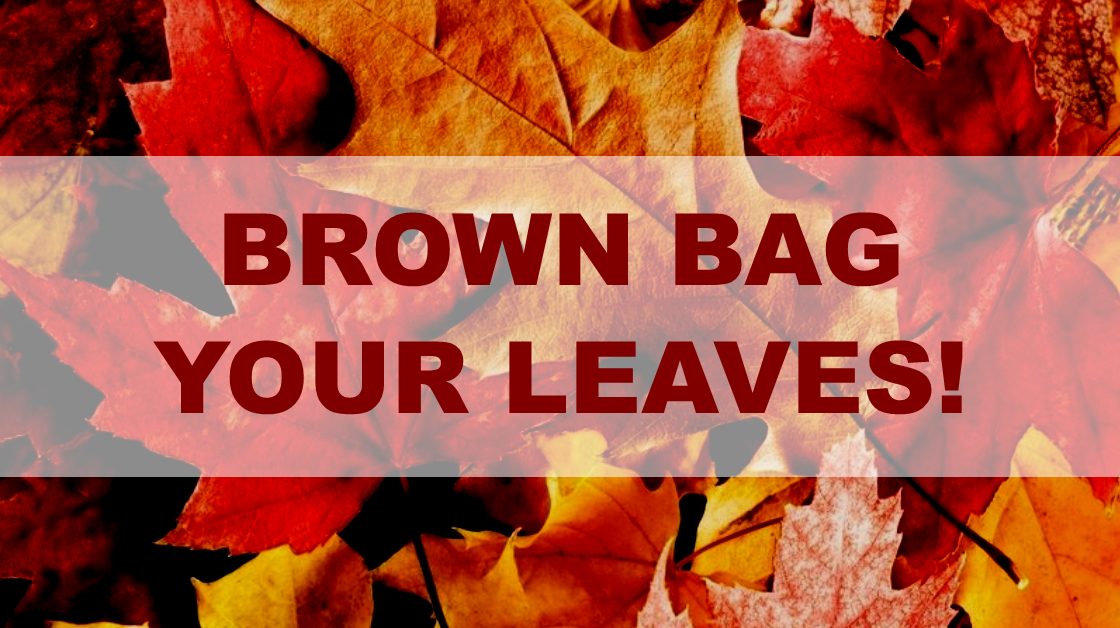 Bag Your Leaves